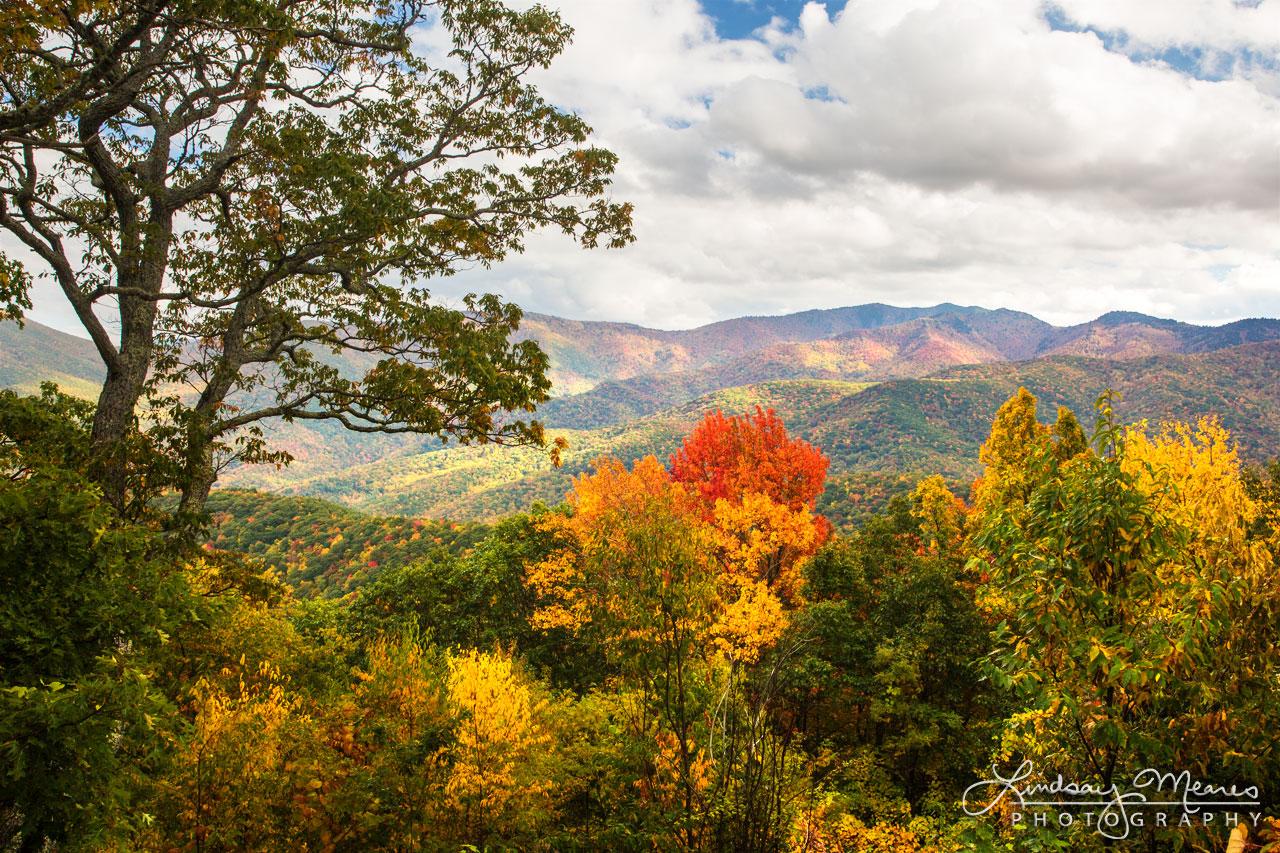 Blue Ridge Autumn Vista